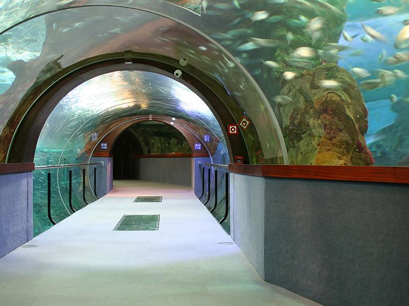Los mejores acuarios de espa a muchosol escapes for Acuarios zona norte