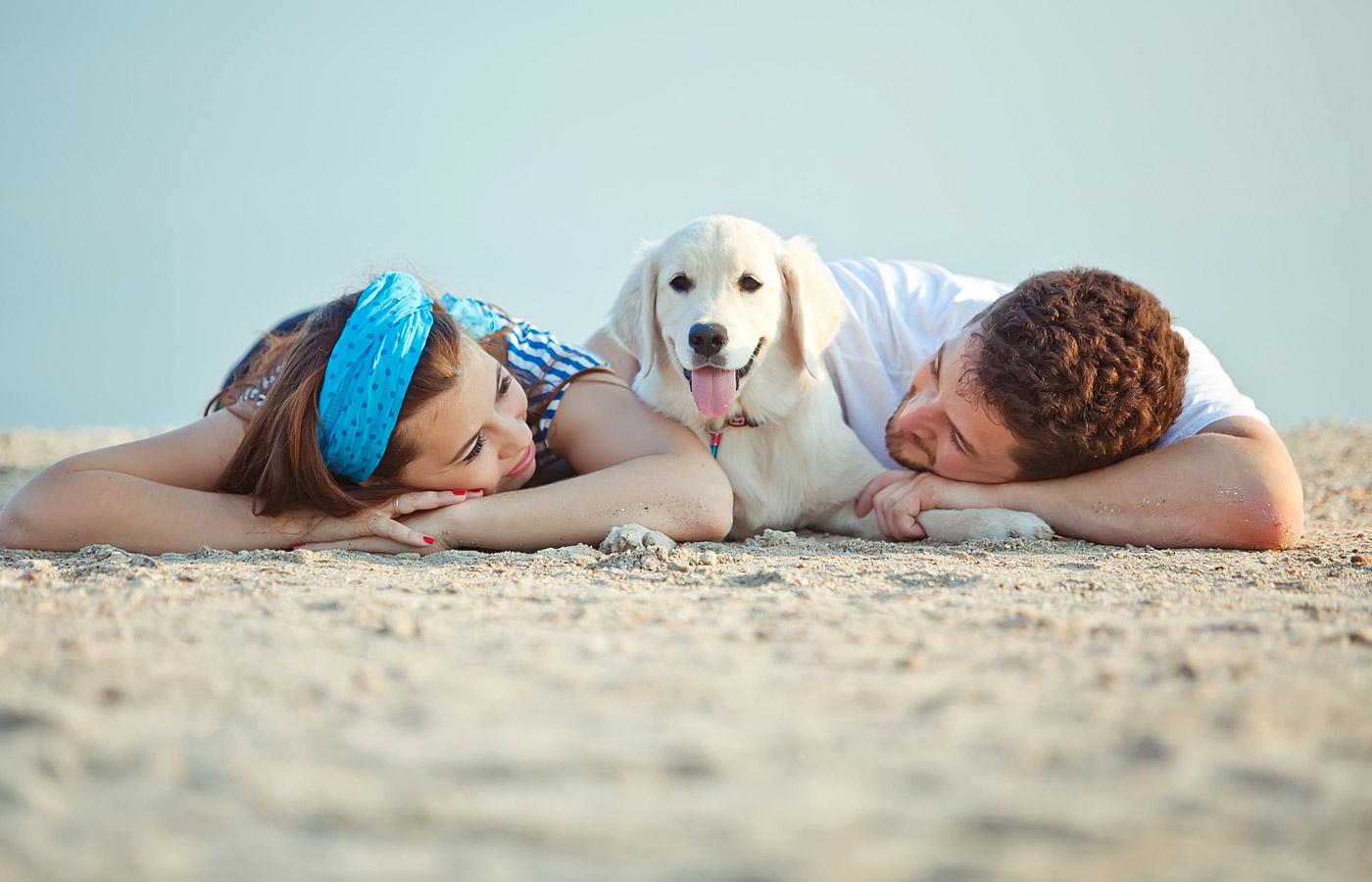 Perro familia playa