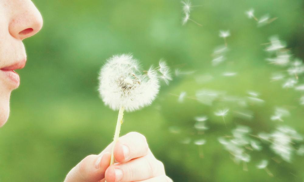 Combatir alergia
