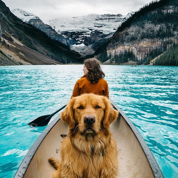 Aspen viaja con su familia como ejemplo de los blogs de animales viajeros