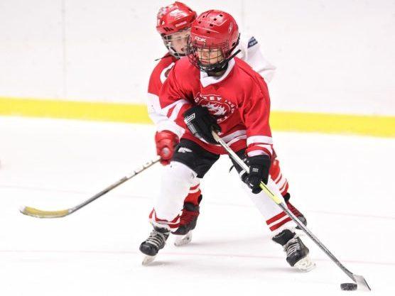 Deportes De Invierno Hockey Muchosol