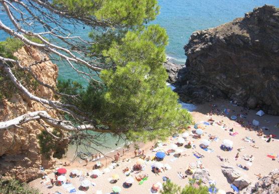playas-nudistas-de-la-costa-brava-illa-roja-muchosol