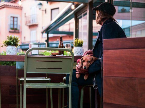 restaurantes-que-admiten-mascota-en-madrid-muchosol