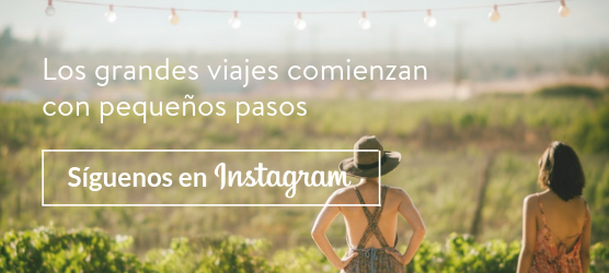 banner-instagram