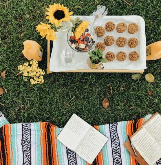 que-llevar-a-un-picnic