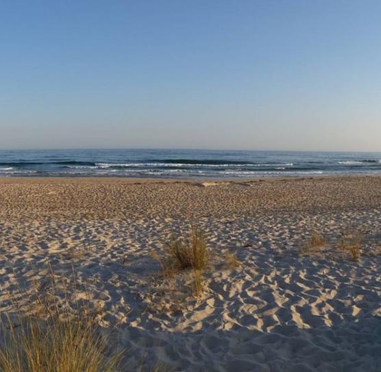 Playas-nudistas-Algarve-Praia-do-Homen-Nu
