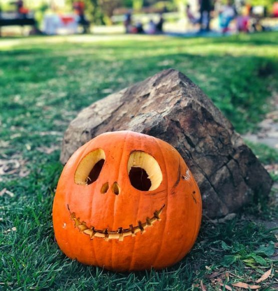 halloween-con-niños-calabazas